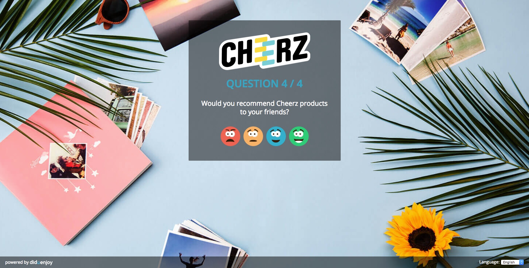 questionnaire satisfaction diduenjoy cheerz